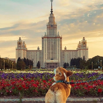 Вдохновение на неделю: самые красивые университеты мира