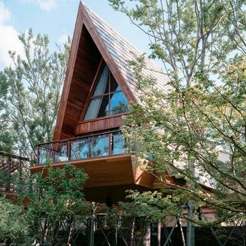 Китайский отель с домиками на деревьях