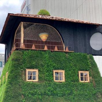 Необычный чайный павильон в Токио