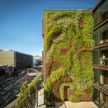 Жилой комплекс с зеленой стеной в Сан-Франциско
