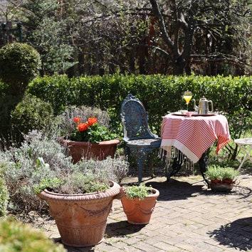 Как подготовить сад к лету: советы дизайнера Екатерины Гулюк