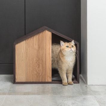 Новый год 2021: 10 подарков для владельцев кошек и собак
