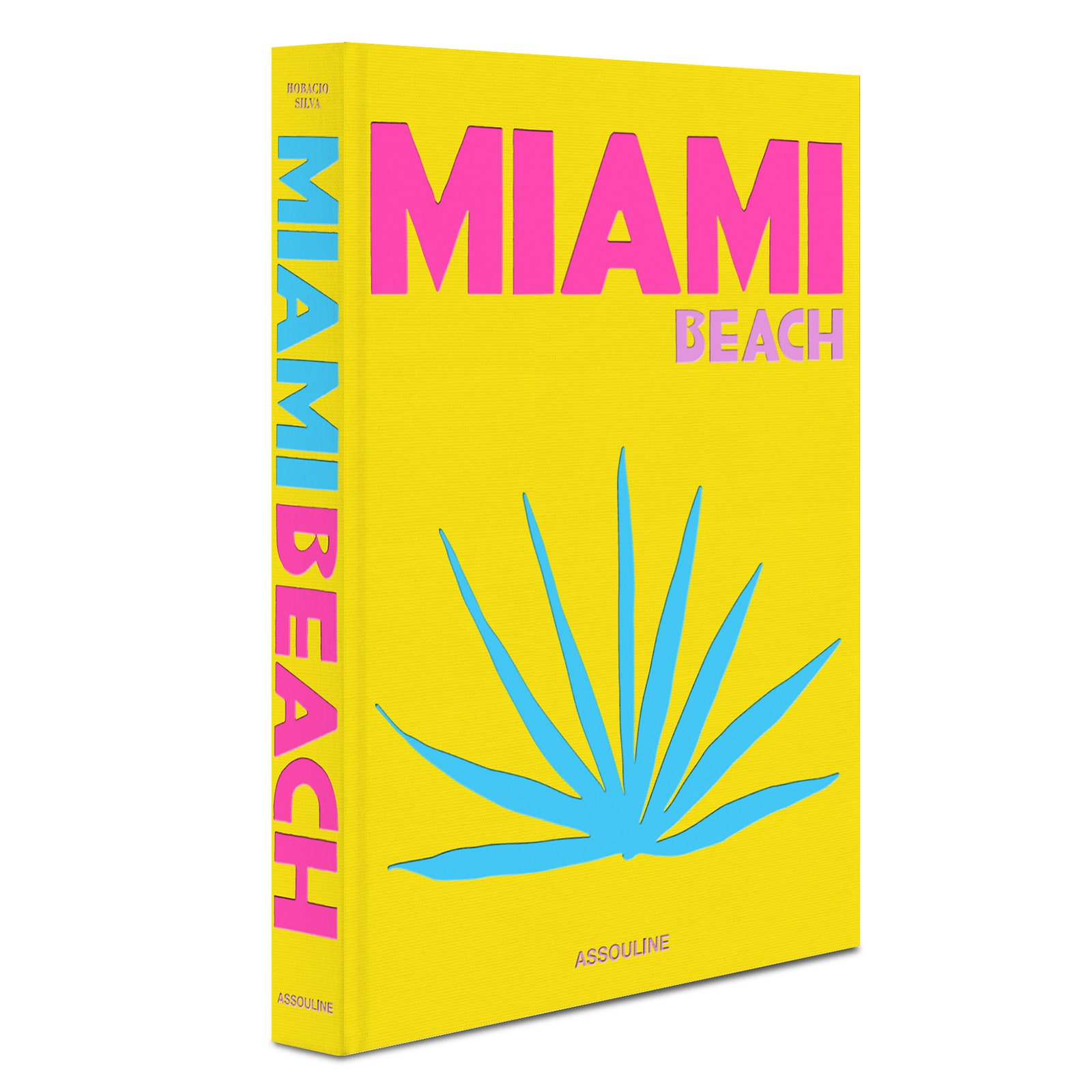 Miami Beach     Assouline