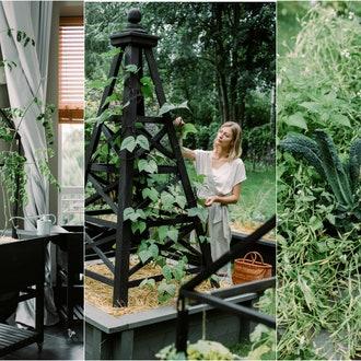 Как создать красивый и современный огород: рассказывает ландшафтный дизайнер Елизавета Михалкова