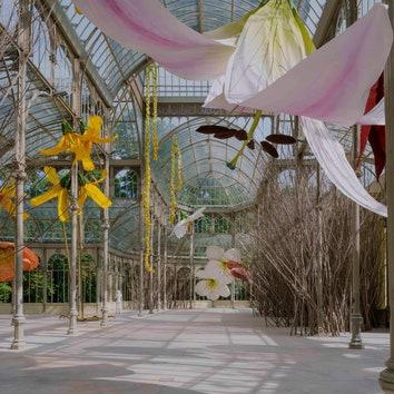 Сюрреалистичная выставка Петрита Халилая в Хрустальном дворце в Мадриде