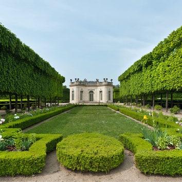 История стиля: французский регулярный сад