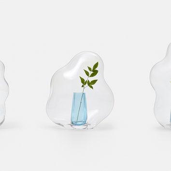 """""""Цветы под колпаком"""": коллекция стеклянных сосудов от студии Yuhsien"""