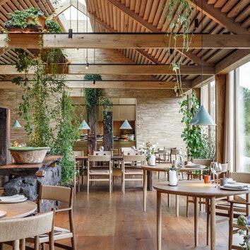 Ресторан Noma в Копенгагене откроется в новом формате