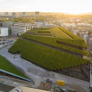 Офисное здание с живыми растениями на фасаде