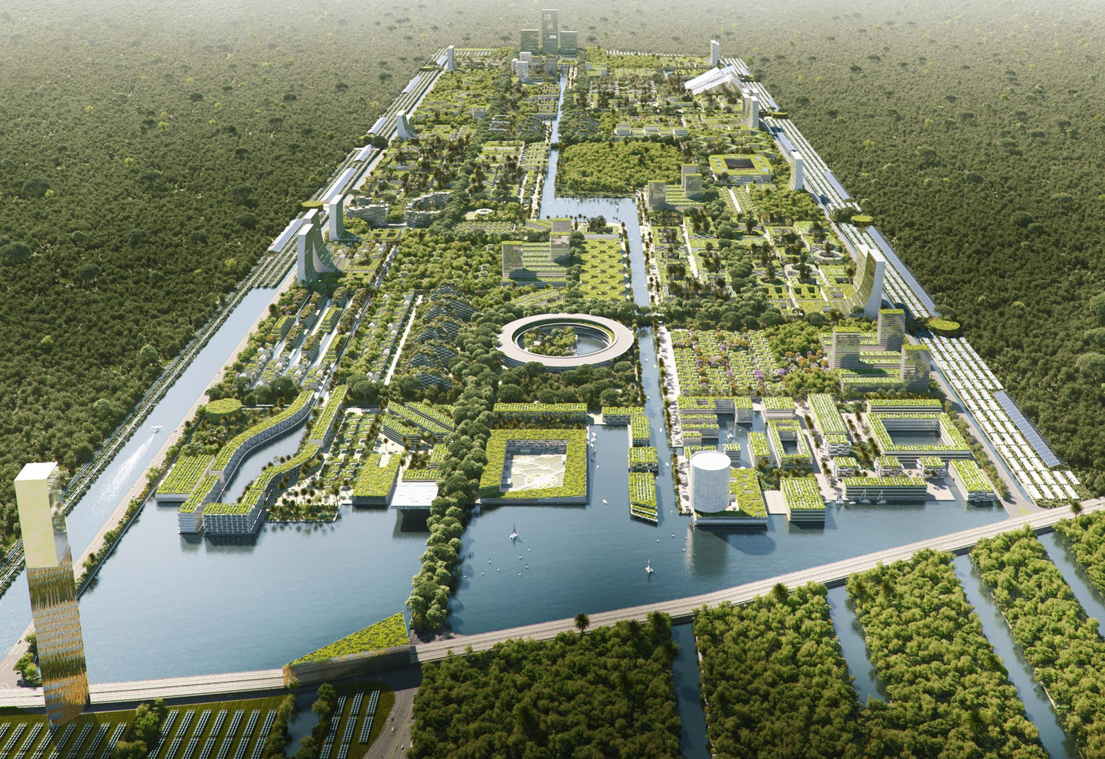Smart Forest City