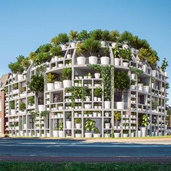 """Green Villa: в Нидерландах появится здание с """"живым"""" фасадом"""