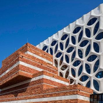 Реконструкция естественно-научного музея Naturalis в Лейдене