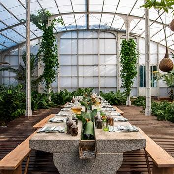 Обеденный зал в тропической оранжерее