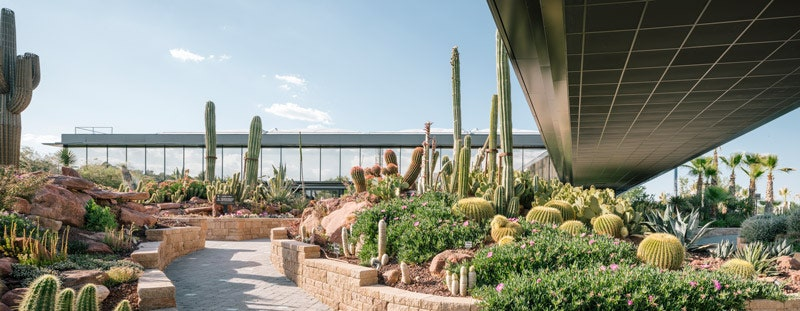 Desert City    Garciagerman Arquitectos