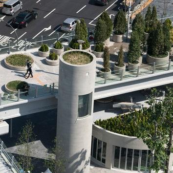 Парк будущего в Сеуле