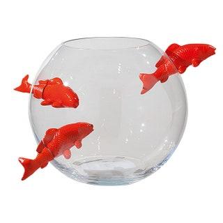 Aquarium   .        .