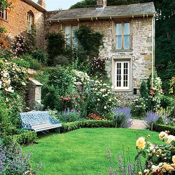 Розовый сад в Англии