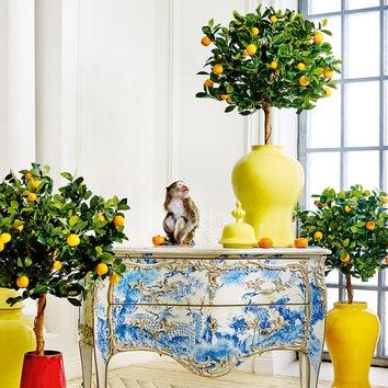 Комод, дерево, Moissonnier; светло-желтые вазы с крышками, керамика, Global Views; красная ваза, керамика, Sia; желтая ваза с крышкой, керамика, Asiatides. Искусственные растения: мандарин голден оранж, TreezCollection, 13300 руб.