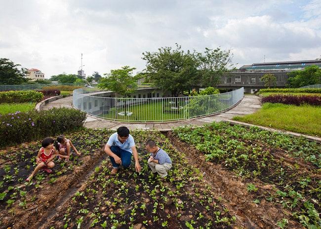 Farming Kindergarten           ADMagazine