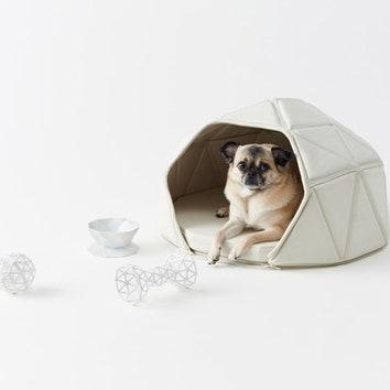 Аксессуары для домашних собак от студии Nendo