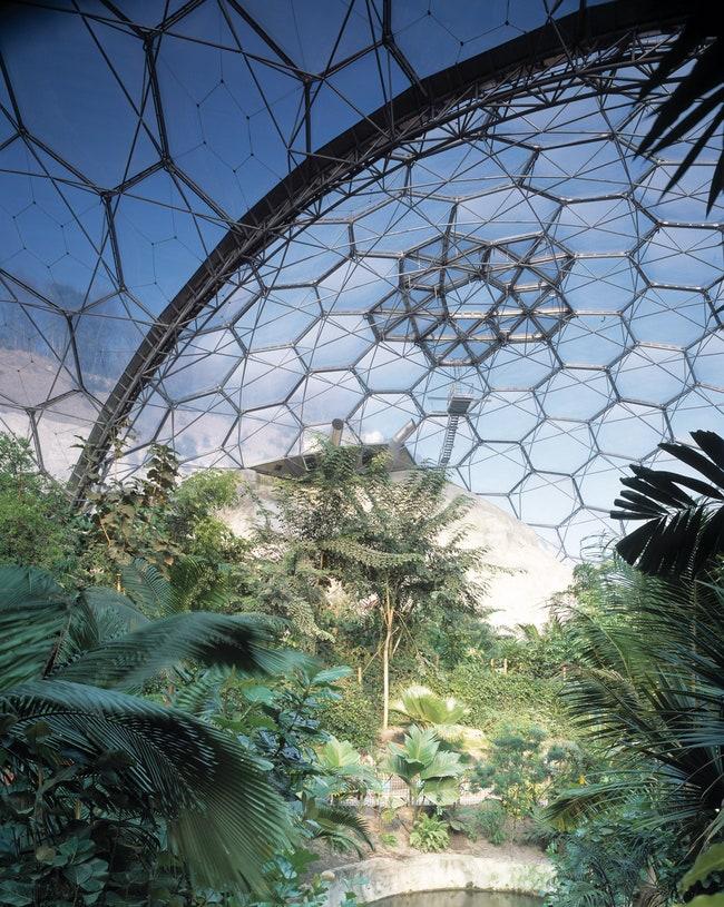 Eden Project    .                .