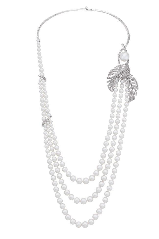 Colibri Perl
