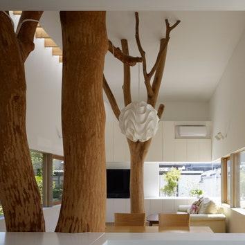 Домашние деревья от Хиронаки Огавы