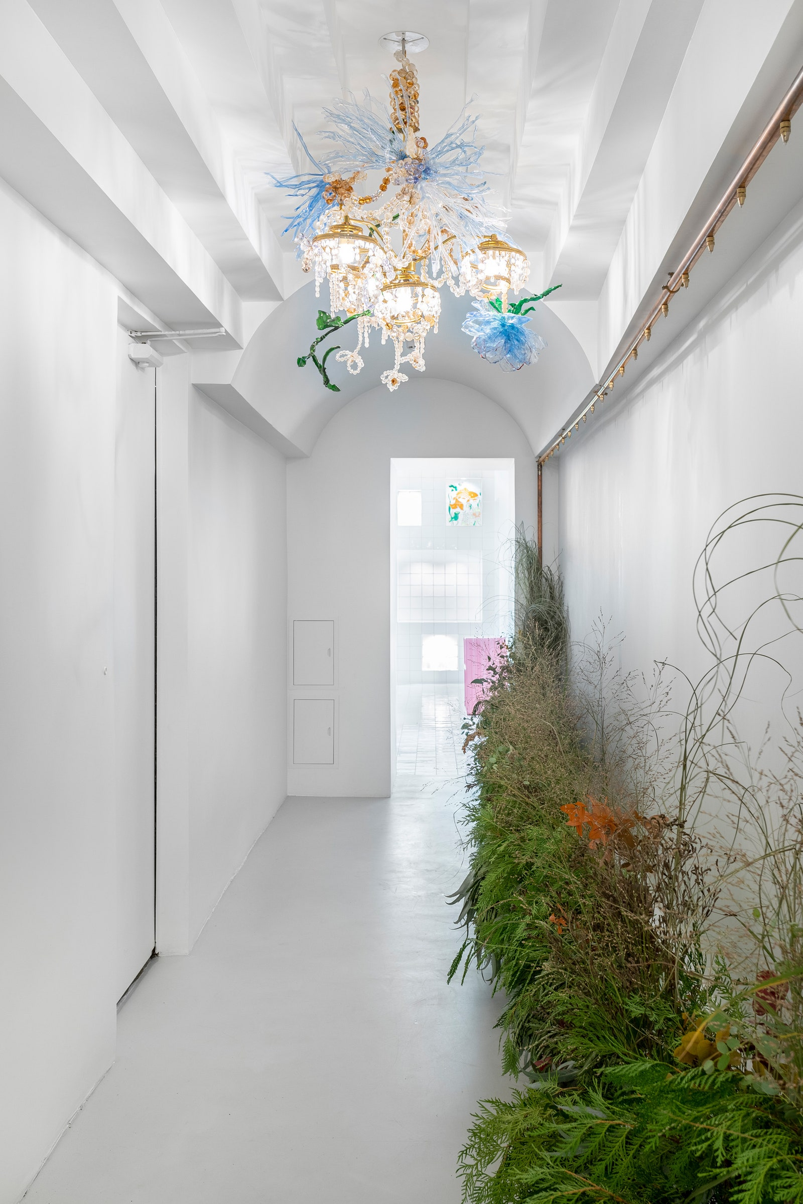 Lupine Flowers  Art